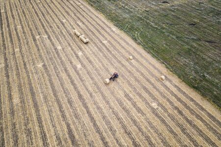 Aerial view from drone to the tractor collect bales of hay after harvesting on a wheat field. Stock Photo