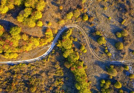 aerial top view from drone of park autumn landscape with trees, colorful lawn, and walking path Reklamní fotografie