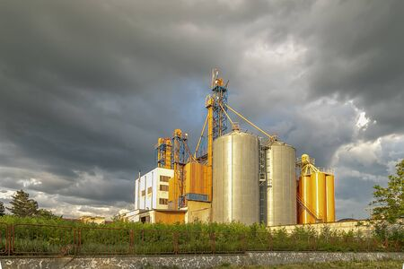 Modern Silo. Set of storage tanks cultivated agricultural crops processing plant.  版權商用圖片