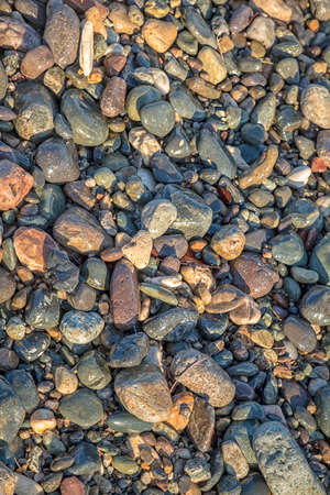 The surface of many river stones. Top view. Beautiful stones background