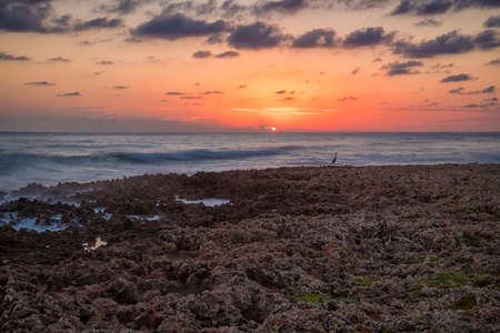 An incredible feeling at the shore of the Atlantic ocean with coral rocks, Cuba 版權商用圖片
