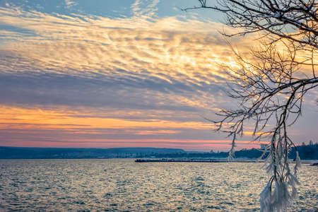 Winter seascape, sunrise / sunset and icicles on tree branches frozen. 版權商用圖片
