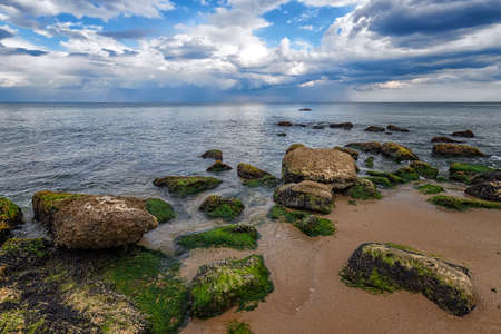 Seascape with rocks with moss on the beach