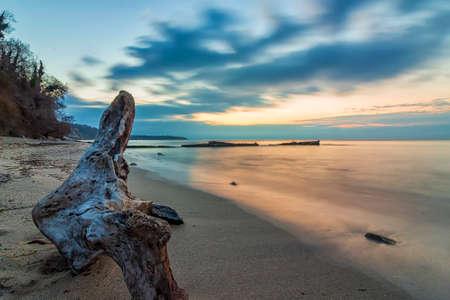 Seascape, Superb long exposure seascape with a log at the Black Sea coast, Bulgaria 版權商用圖片