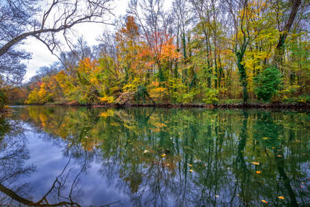 Amazing autumn scene of a river in a forest with typical yellowish colors of autumn