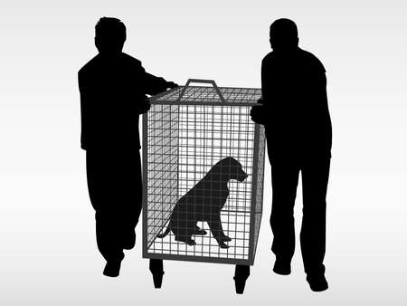 animal shelter: The dog catchers and the stray abandoned dog
