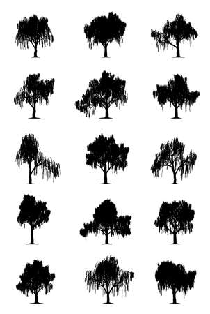 tree silhouettes: Weeping willows Illustration