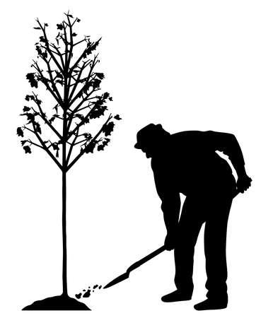 Man planting a tree