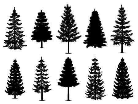 Sammlung von zehn Kiefern-Tannenbaum-Silhouetten. Isolierter weißer Hintergrund. EPS-Datei verfügbar. Vektorgrafik