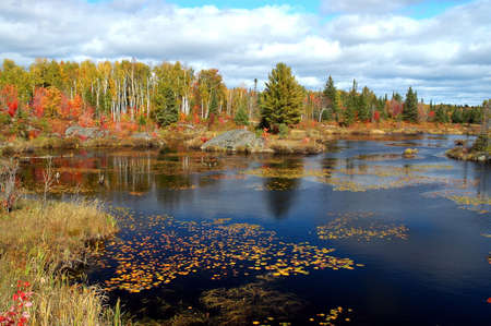 Fall pond scene taken in Northern Ontario in October