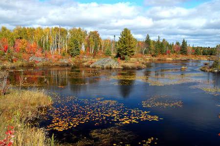 Fall pond scene taken in Northern Ontario in October