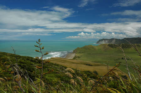 Scenery from the east coast of New Zealand
