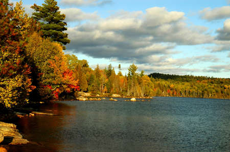 Fall comes to a bay on Flack Lake