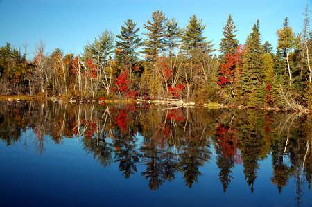 Fall scene at Flack lake, Ontario