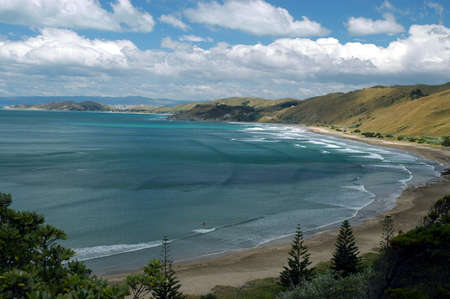 New Zealand coastline in the summer on the North Island