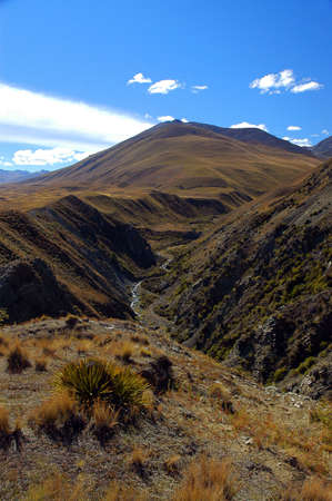 Spaniard grass and river valley in the Mackenzie Country, South Island, New Zealand