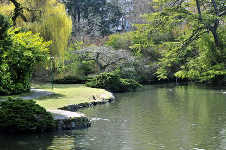 Beacon Hill park pond and path in the spring in Victoria, BC