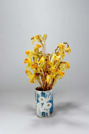 The dried irises are beautifully placed in a white glass ornament in a clay cup