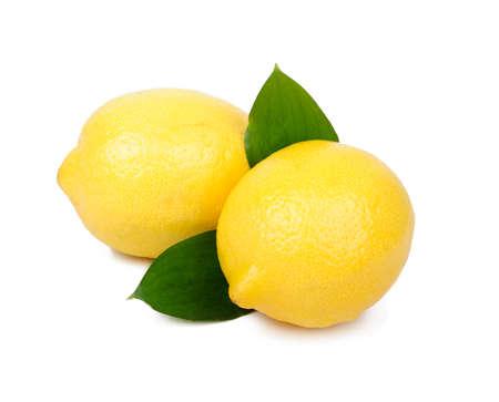 Lemon fruit isolated on white background Stock Photo - 14003461
