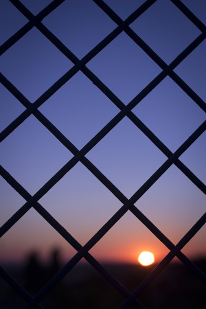 evening sun and red and blue sky shining through a metal wire mesh fence in silhouette at dusk
