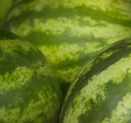grocers: Watermelon fruit on sale in supermarket grocers shop on display. Stock Photo