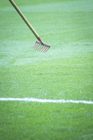 football pitch: Soccer football pitch white line and grass and rake.