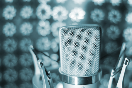 estudio de grabacion: Audio grabación micrófono de estudio vocal voz con montura antichoque y construido en el filtro anti pop para canto y voz en off actores que hacen las voces en off.