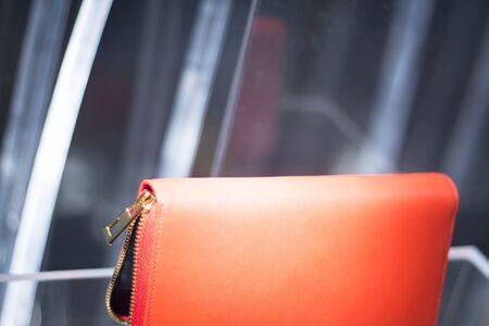 designer bag: Shop window luxury fashion clothes store designer leather handbag clutch bag photograph.