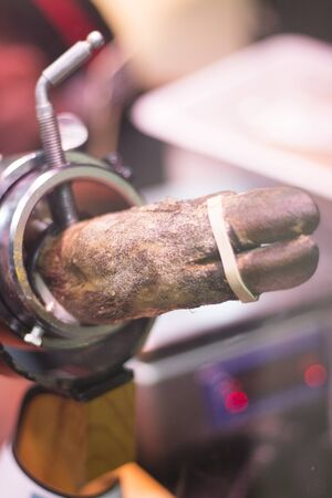 iberian: Spanish Iberian cured ham leg cut photo. Stock Photo