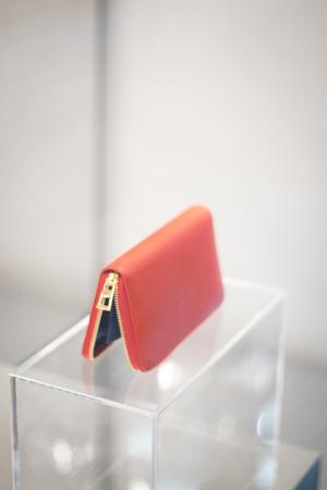 clutch bag: Shop window luxury fashion clothes store designer leather handbag clutch bag photograph.