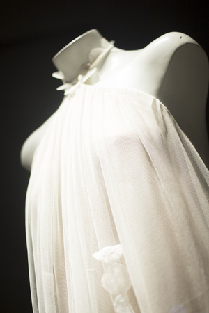 Bridal Dress Store Bride Wearing Modern Stylish Wedding Gown.. Stock ...