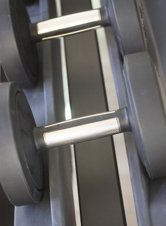free weights: Gym exercise dumbell free weights in fitness studio gymnasium for strength and resistance training and muscle bodybuilding.