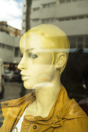 Womenswear fashion shop window ladies store mannquins dummies wearing fashionable modern clothes.