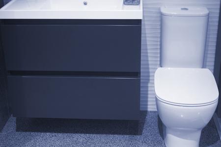 Bathroom showroom display of new design option for toilet home building improvement lavatory works.