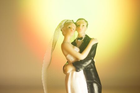 Wedding couple marriage cake topper plastic figures with tuxedo evening suit, white weddding dress veil.