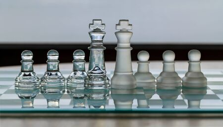 Chess King Pieces - business concept series - merger, contacts, competition, network, survive, success  photo