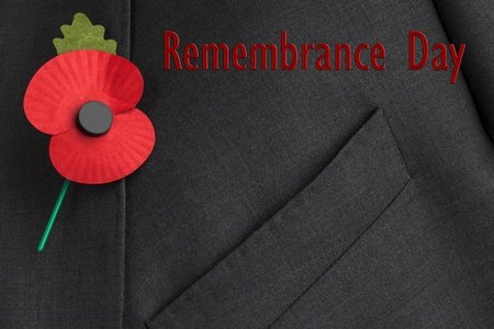 remembrance day: Poppy on jacket lapel, for Poppy Day or Remembrance Day