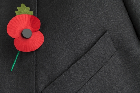 Poppy for Remembrance Day  photo
