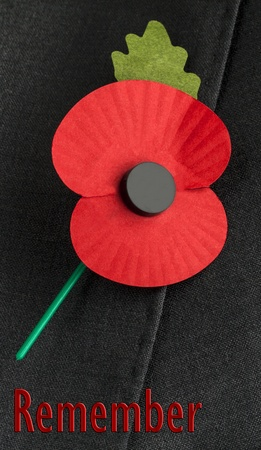 Poppy on jacket lapel, for Poppy Day or Remembrance Day   Stock Photo