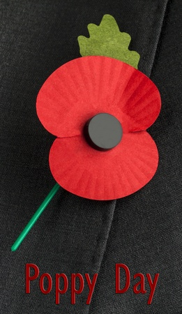Poppy for Poppy Day or Remembrance Day  photo