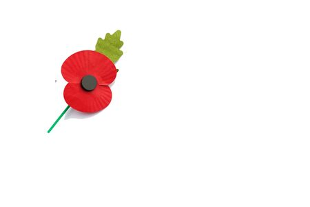 ?text space?: Poppy isolated on white with text space - Remembrance Day Foto de archivo