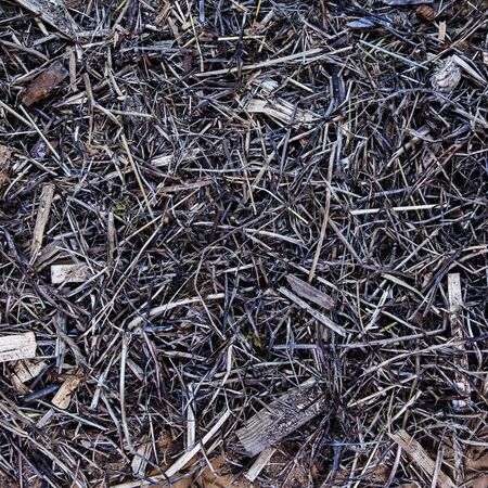 intricate: Intricate sticks, twigs, straw, tinder and wood background texture - zoom in! Stock Photo