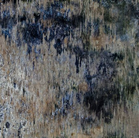 gunk: Wood board abstract and grunge vintage background - square.