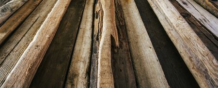 diminishing perspective: Driftwood background texture, panorama - wood and timber in diminishing perspective. Stock Photo