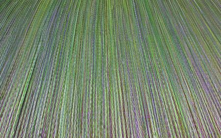 diminishing perspective: Colorful, green and purple beach straw mat, background texture, with diminishing perspective, lines and focus.