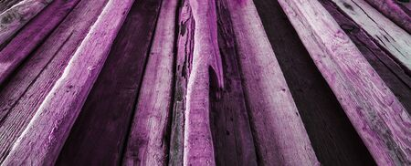 diminishing perspective: Purple  Pink driftwood background texture, panorama - wood and timber in diminishing perspective. Stock Photo