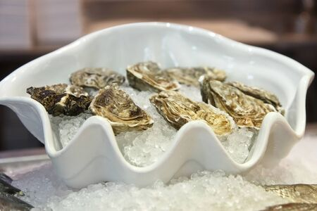 oysters with ice on a plate Stock Photo