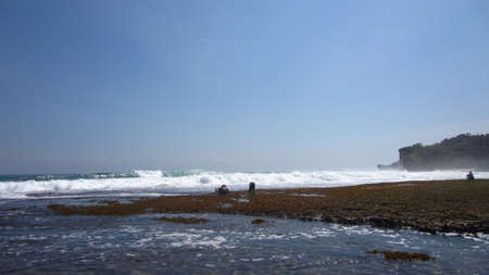 beach landscape: Beach Landscape