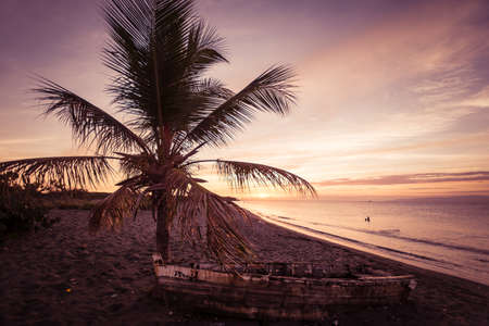 Caribbean Sunset at the beach with palm trees