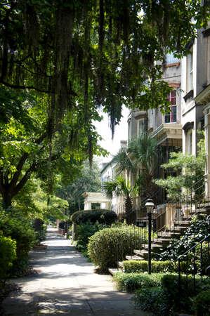 Savannah, Georgia, USA historic downtown sidewalks, rowhouses and oak trees.